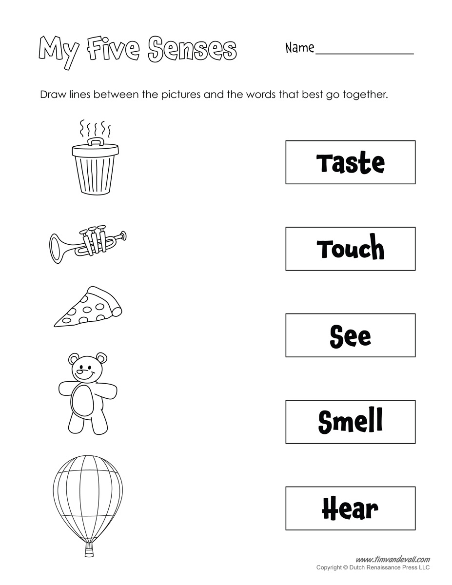 A Collection Of Printables That Are Useful For Everyday Classroom | Free Printable Worksheets Kindergarten Five Senses