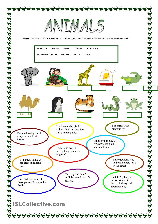 Animals | Free Esl Worksheets | Teachers Resources | Pinterest | Free Printable Esl Worksheets