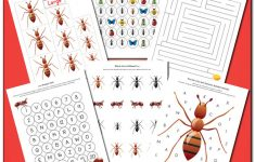Ant Worksheets Printables