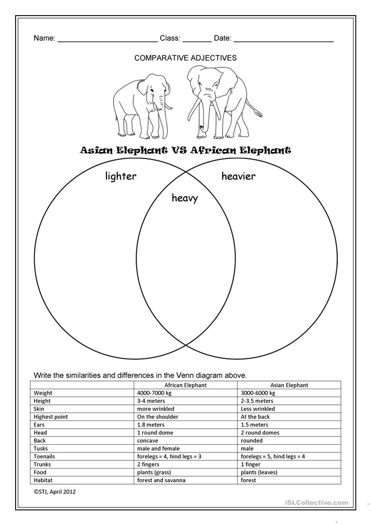Asian Elephant Vs African Elephant Worksheet - Free Esl Printable | Free Printable Worksheets On Africa