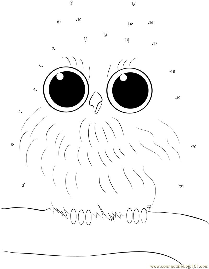 Baby Owl Dot To Dot Printable Worksheet - Connect The Dots   Owl Babies Printable Worksheets