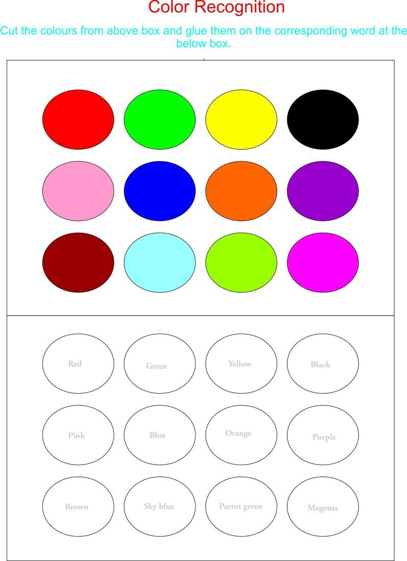 Color Recognition Worksheets For Preschoolers | Working With Colors | Color Recognition Worksheets Free Printable
