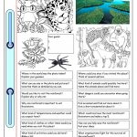 Conversation Corner: Where In The World? (4)   Rainforest Worksheet | Rainforest Printable Worksheets