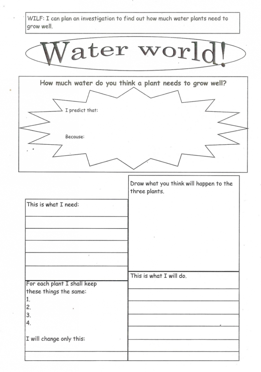 Enabling Access: Tips For Adapting Worksheets For Students With   Growing And Changing Printable Worksheets