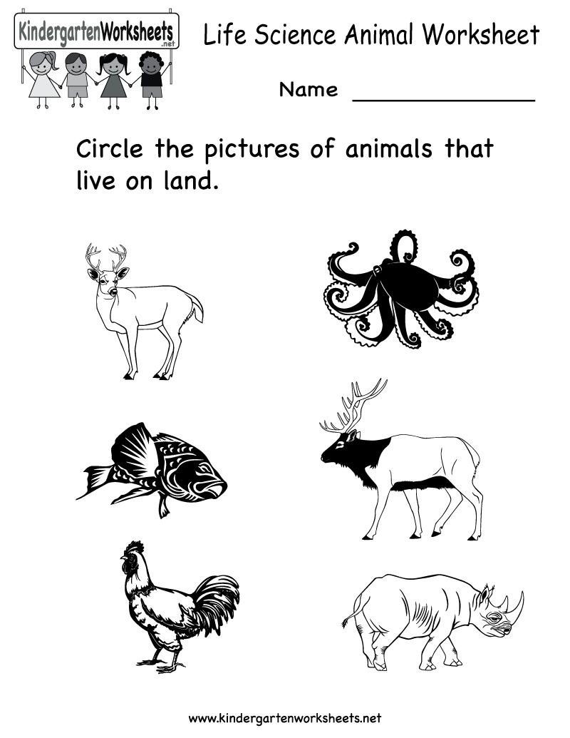 Free Printable Animal Worksheet For Kids | Crafts And Worksheets For | Free Printable Worksheets For Kids Science