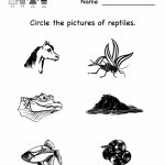 Free Printable Science Worksheets For Kindergarten To Free   Math | Free Printable Reptile Worksheets