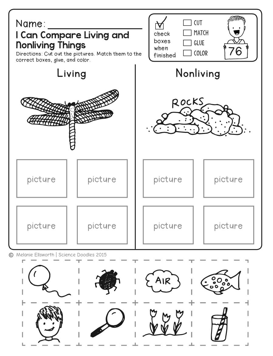 Freebie! No-Prep Kindergarten Science Doodle Printables | T E A C H | Free Printable Science Worksheets