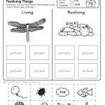 Freebie! No Prep Kindergarten Science Doodle Printables | T E A C H | Kindergarten Science Worksheets Printable