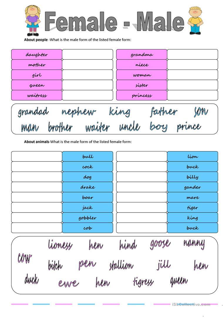 Gender: Female - Male Worksheet - Free Esl Printable Worksheets Made   Free Printable Worksheets On Genders