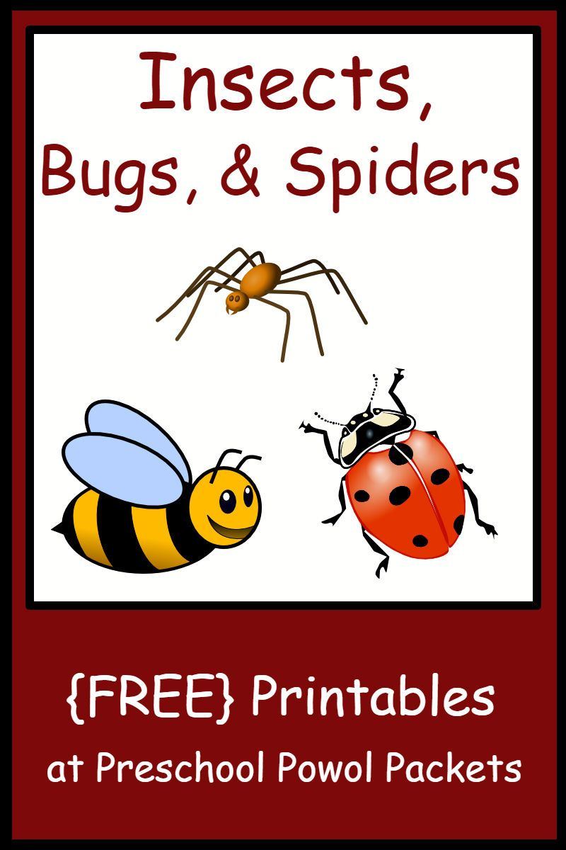 Insect, Bug, & Spider Themed {Free} Preschool Printables | Teaching | Free Printable Worm Worksheets