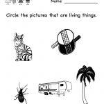 Kindergarten Kids Science Worksheet Printable | Worksheets (Legacy | Kindergarten Science Worksheets Printable
