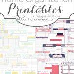 More Than 200 Free Home Management Binder Printables   Fab N' Free   Free Printable Home Organization Worksheets