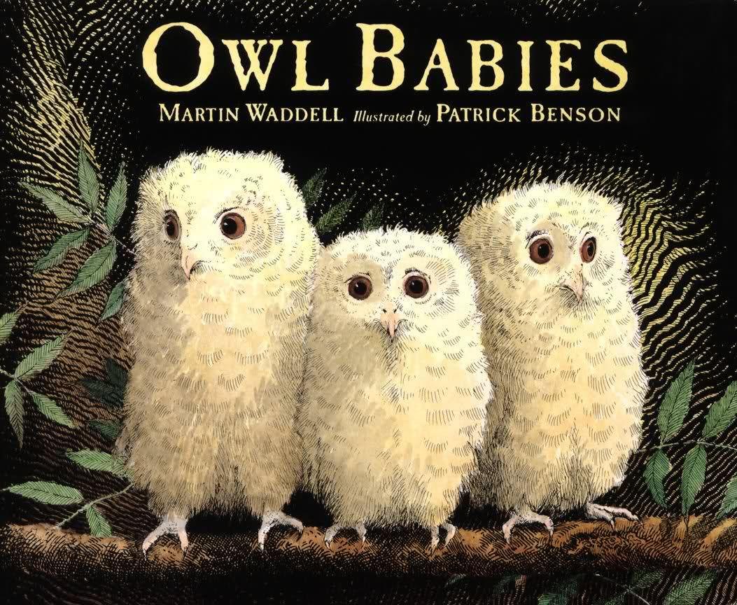 Owl Babies! Great Children's Book About Three Owlet Siblings   Owl Babies Printable Worksheets