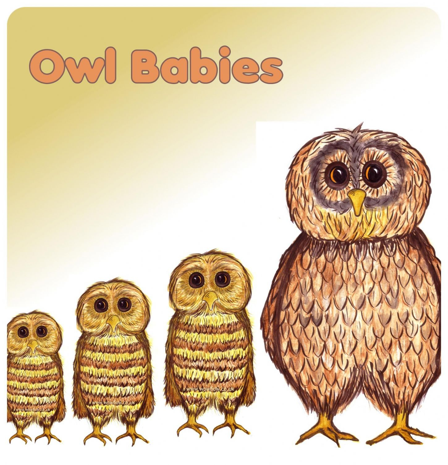 Owl Babies Printable Worksheets | Cialiswow | Owl Babies Printable Worksheets
