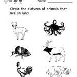 Science Printables For Kids | Life Science Animal Worksheet   Free | Kindergarten Science Worksheets Printable