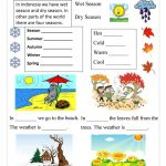 Season Worksheet   Free Esl Printable Worksheets Madeteachers | Free Printable Seasons Worksheets