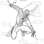 Spiderman Body Parts   Esl Worksheetsarajbigg87   Spiderman Worksheets Free Printables
