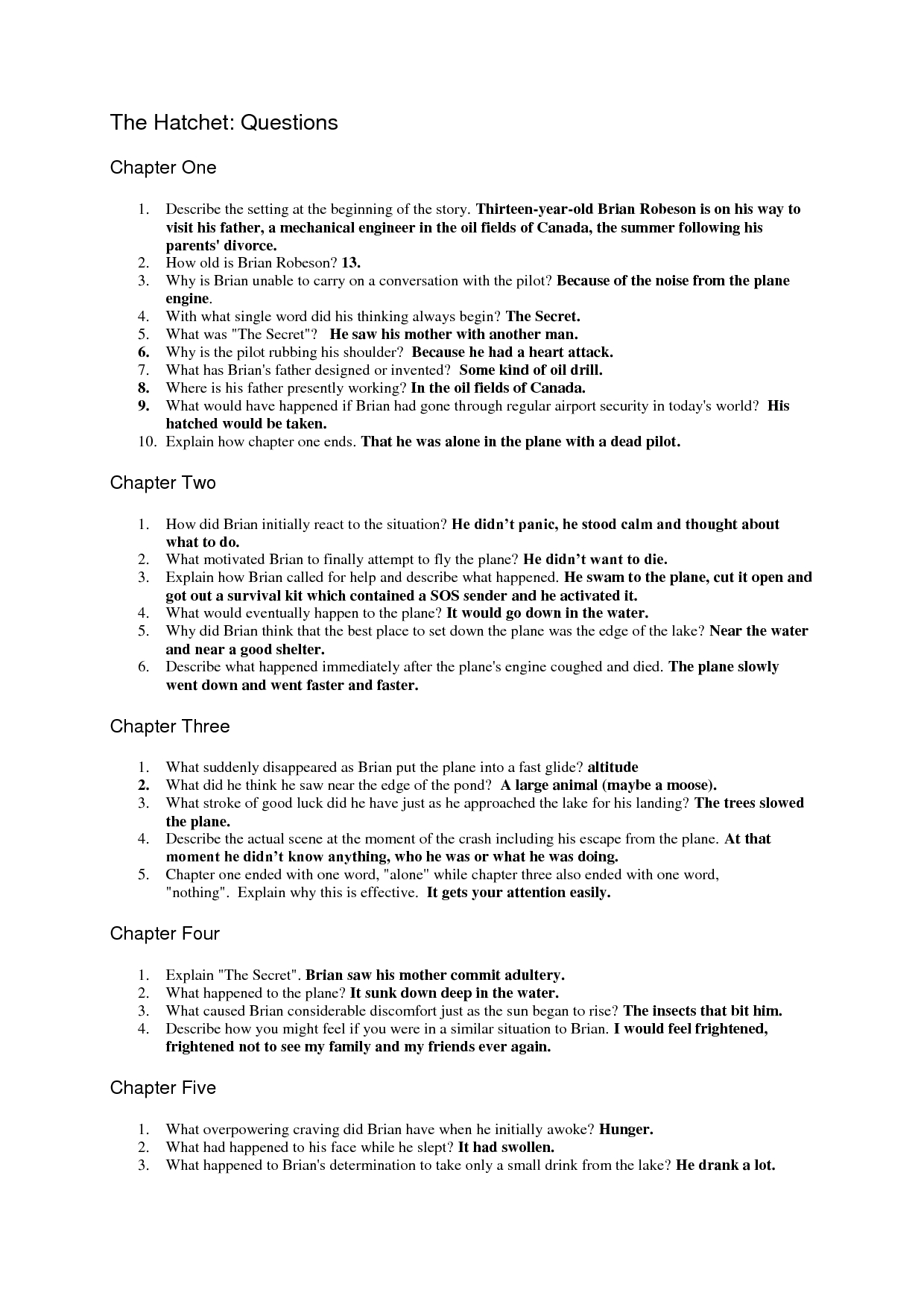 The Hatchet Question Sheet - Answers | Questions | Essay Questions | Hatchet Worksheets Printable