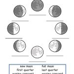 This Is A Worksheet To Show The Phases Of The Moon.   Science   Moon   Phases Of The Moon Printable Worksheets