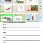 Triple Consonant Blends   Learning Vocabulary Worksheet   Free Esl   Free Printable Consonant Blends Worksheets