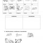 Vertebrates And Invertebrates Worksheet   Free Esl Printable | Free Printable Worksheets On Vertebrates And Invertebrates