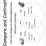 Wonders Second Grade Unit Four Week One Printouts | Printable Compare And Contrast Worksheets