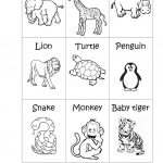Zoo Animals   Big Or Small? Worksheet   Free Esl Printable | Free Printable Zoo Worksheets